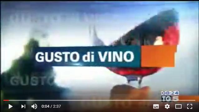 Intervista TG5  a Vinoforum 2016 ad Alessio Macoratti